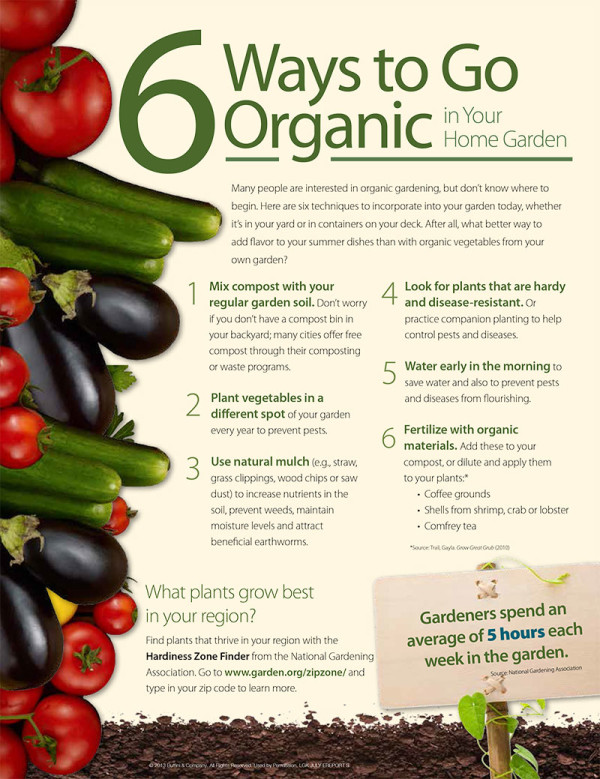 6 Ways to Go Organic in Your Home Garden